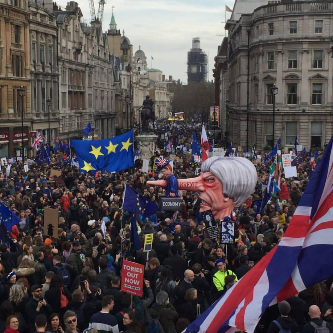 Brexit Protest March 2019