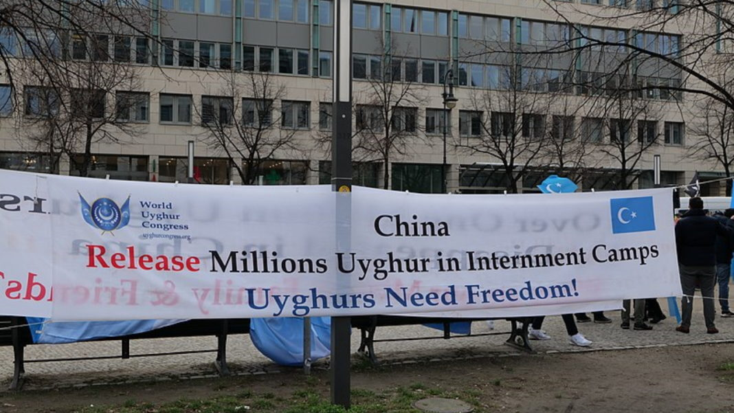 A Conversation with Rahima Mahmut, Director of the World Uyghur Congress